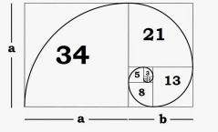 Understanding the Fibonacci Sequence and Golden Ratio